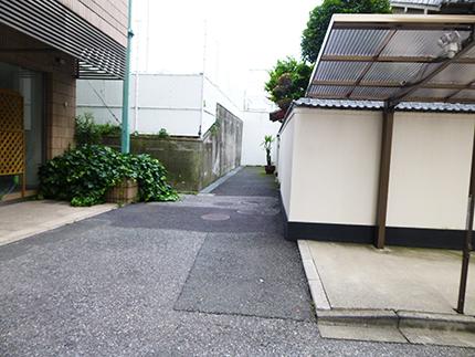ノラや…5.jpg
