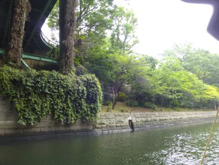 神田川_1.JPG