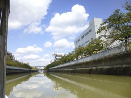 横十間川_2.JPG