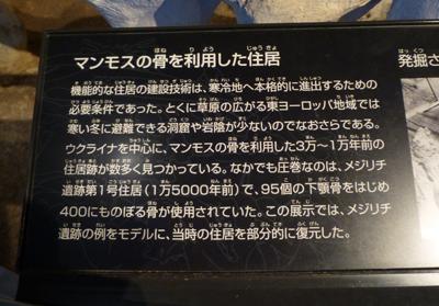 マンモス骨住居説明.jpg