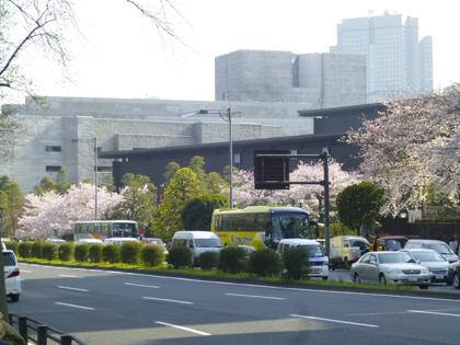 桜_7.JPG