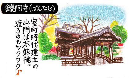 足利7_鑁阿寺イラスト.jpg