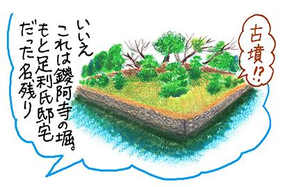 足利8_鑁阿寺堀.jpg