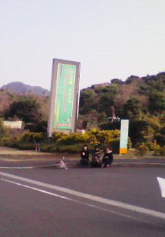 201001101329000.jpg