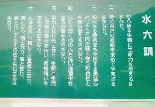 20101031131308.jpg