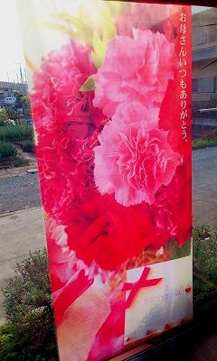 母の日 カーネーション 花束