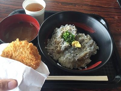 田子の浦漁港 静岡 富士 しらす街道 しらす丼