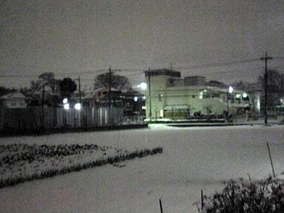 今年二度目の大雪