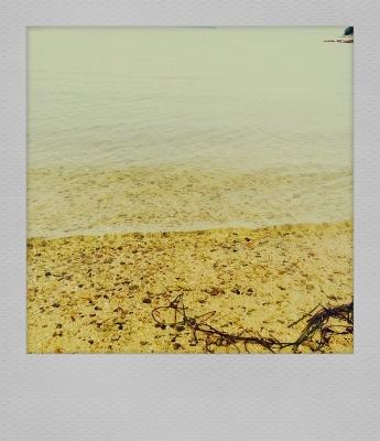 写真 3 (2) (345x400).jpg