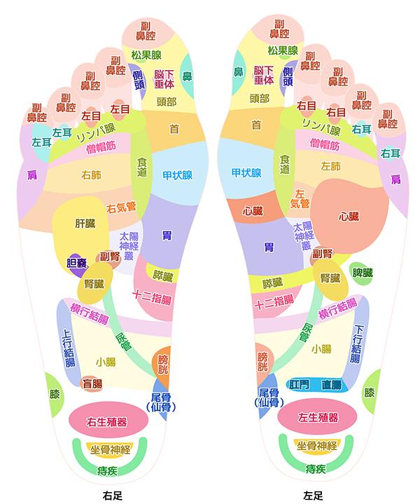 椿乃華オンラインショップ|足つぼ