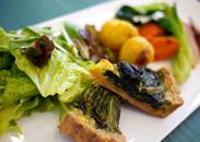 本日の野菜料理