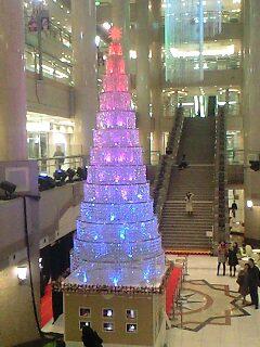 横浜ランドマークタワーのクリスマスツリー2008