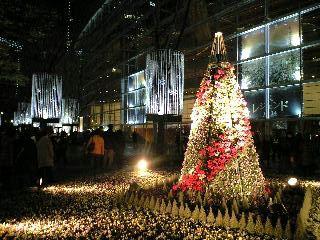 東京クリスマスイルミネーション2007@有楽町国際フォーラムクリスマスツリー