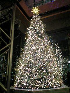 東京クリスマスイルミネーション2007@丸ビルクリスマスツリー
