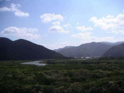 住用村マングローブ林