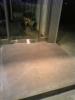 ビー玉を埋め込んだカラーコンクリートポーチ