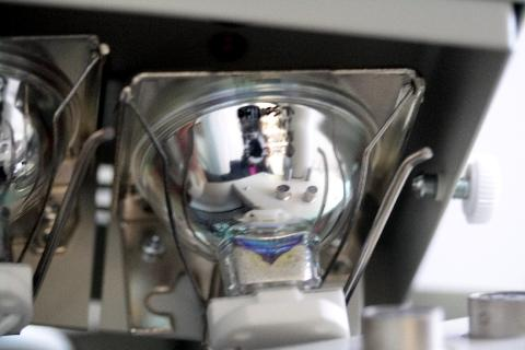 6423 15V150W フィリップ マイクロスコープ ハロゲンランプ