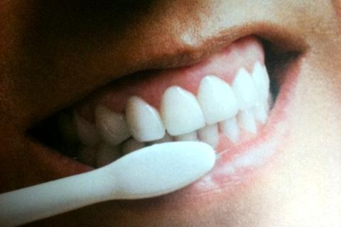筧利夫 電動歯ブラシ セラミック 歯周病
