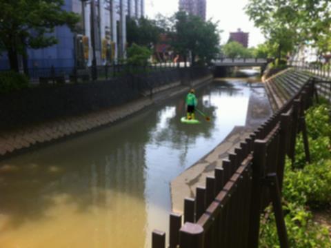 長岡市 柿川 パドルボード パドボ