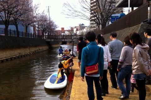 柿川 桜  祭り