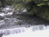箱根:宿のすぐそばを流れる川の図