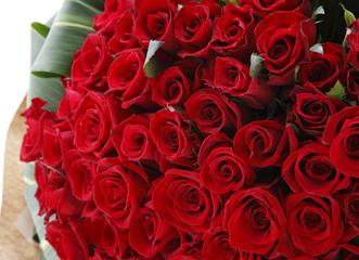 たくさんのグリーンで囲んで、赤いバラ本来の魅力を引き立てた華やかな花束です。人生の大切な節目を迎えた方への贈物におすすめです。こんな花束をもらう機会はなかなかないもの。誕生日、還暦、銀婚式など何年分もの感謝を込めて贈れば、必ず喜んでいただけます。