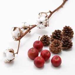 12月になったらすぐにでも飾りたい、クリスマス気分を満喫できるお花のセットです。とっても長持ちのものばかりを集めました。コットンをひとつずつ切り離して、まとめてビンに入れて飾ってみました。ビンの中は、りんごのいい香りでいっぱいです。クリスマスツリーの飾り付けにもおすすめです。