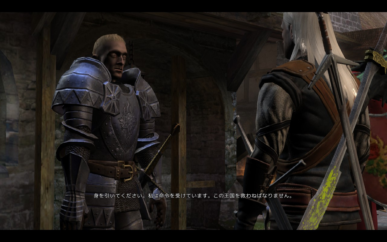The Witcher エピローグ ヴィジマの灰 The Ashes Of Vizima Nvnh S Blog