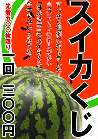 2013年のスイカくじポスター