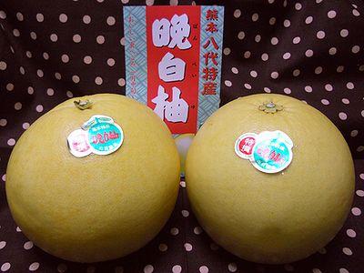晩白柚胡椒1