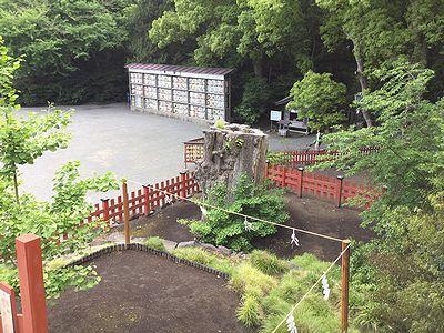 鶴岡八幡宮の銀銀杏