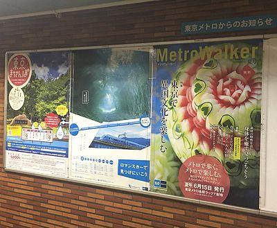 MetroWalker1