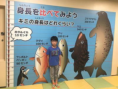 魚津水族館5