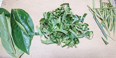 手作り柿の葉茶1