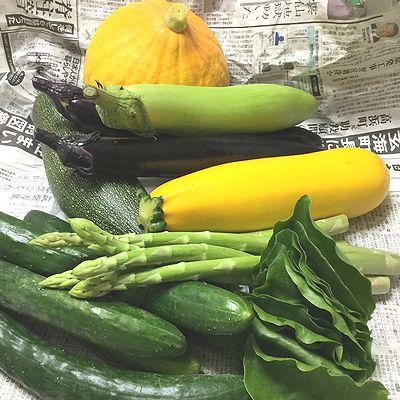 福岡から野菜1