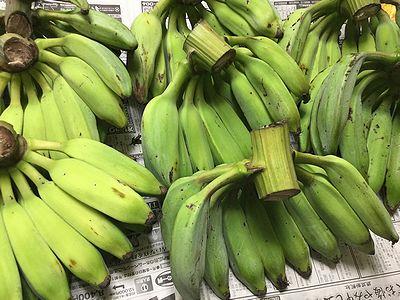 青バナナ2