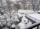 公園の雪景色☆