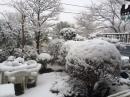 庭の雪景色☆