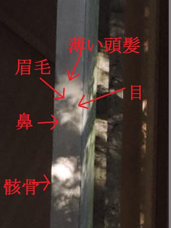 内宮虎哲パパの解説