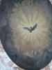 天井のハト