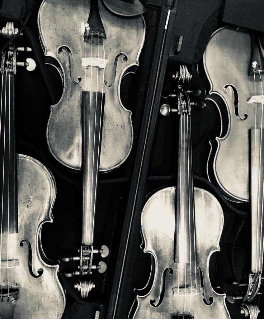 おけいこ バイオリン ビバ
