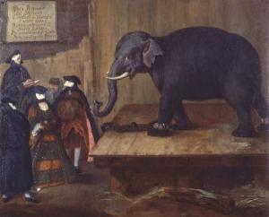 The Elephant Gallerie di Palazzo Leoni Montanari