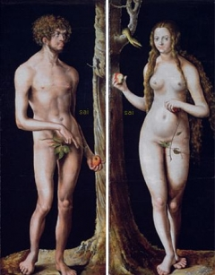 Adam and Eve (1508-1510) by German artist Lucas Cranach the Elder, on February 07, 2011 at the Musee du Luxembourg in Paris, during an exhibition Cranach and his time