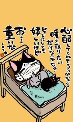 neko_374_400.jpg