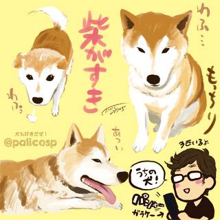 170504_dog_s.jpg