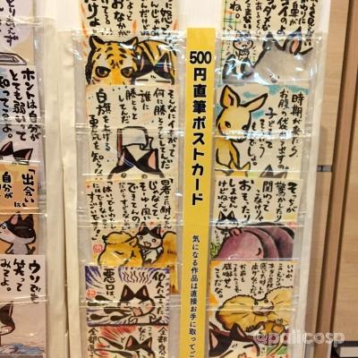 ぱりこ什器写真4