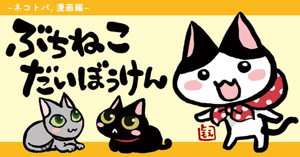 top_buchi.jpg