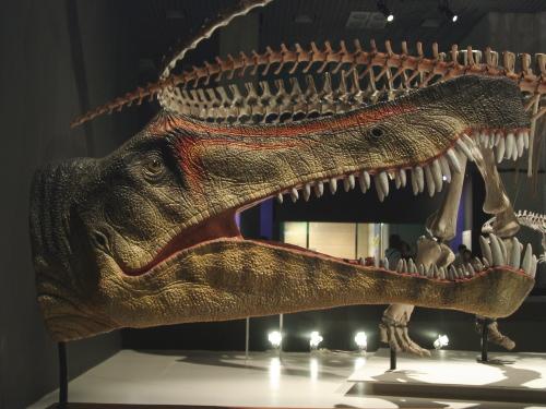 大恐竜展 Dinosaurs of Gondwana...