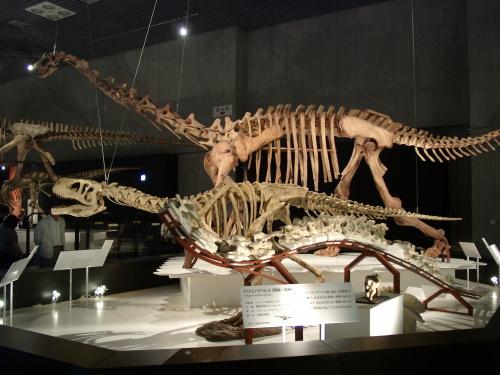 トリゴノサウルス/アウカサウルス/マシャカリサウルス 001