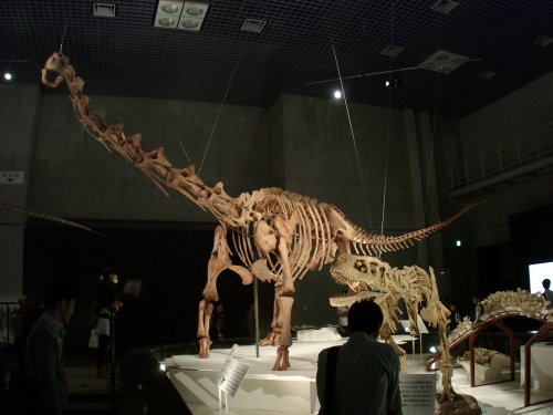 マシャカリサウルス 001